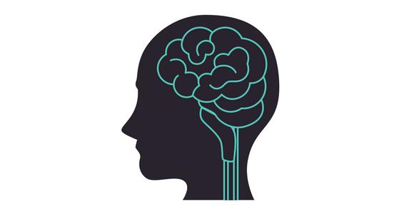 Brain better